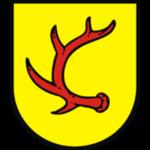 herb Nysa Trzebiel