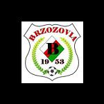 """herb """"Brzozovia"""" Brzozów"""