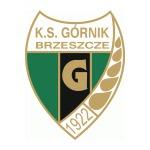 herb KS Górnik Brzeszcze