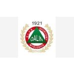 herb Dalin Myślenice U19