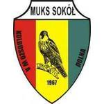 herb Sokół Kolbuszowa