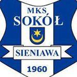 herb Sok� Sieniawa