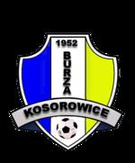 herb LZS BURZA Kosorowice