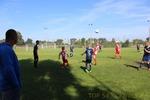TOP54 - Granica Terespol 2-5