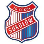 herb Sok� Soko��w Ma�opolski