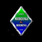herb Miedzanka Miedzna