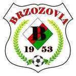 herb Brzozovia Brzozów