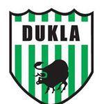 herb Dukla Bysina