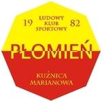 herb Płomień Częstochowa