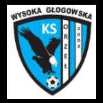 herb Orzeł Wysoka Głogowska