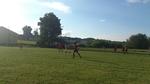 Roztocze 11:0 Spoiwo Lublin - 26.05.2013
