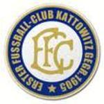 herb 1. FC AZS AWF Katowice
