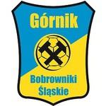 herb G�rnik Bobrowniki �l�skie