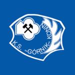 herb Górnik Konin