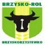 herb KP  Brzyskorzystewko