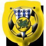 herb Dragon Jacz�w