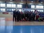 Sokolik CUP 30.01.2015