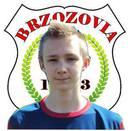 Michał Zdziarski