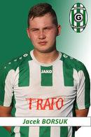 Borsuk Jacek